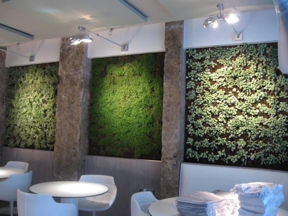 Deco Vegetale Salle De Bain
